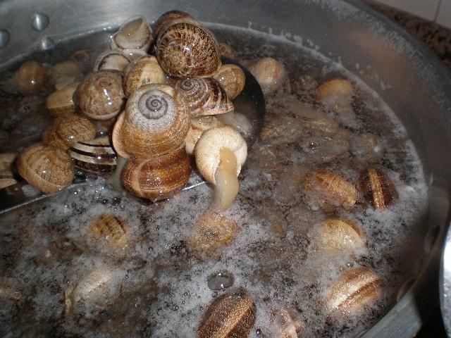 Lavar caracoles