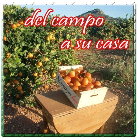 f64f51f7a96bb14202569a0586002bf4 - ▷ Naranjashoy.com comprar naranjas online por internet 📖