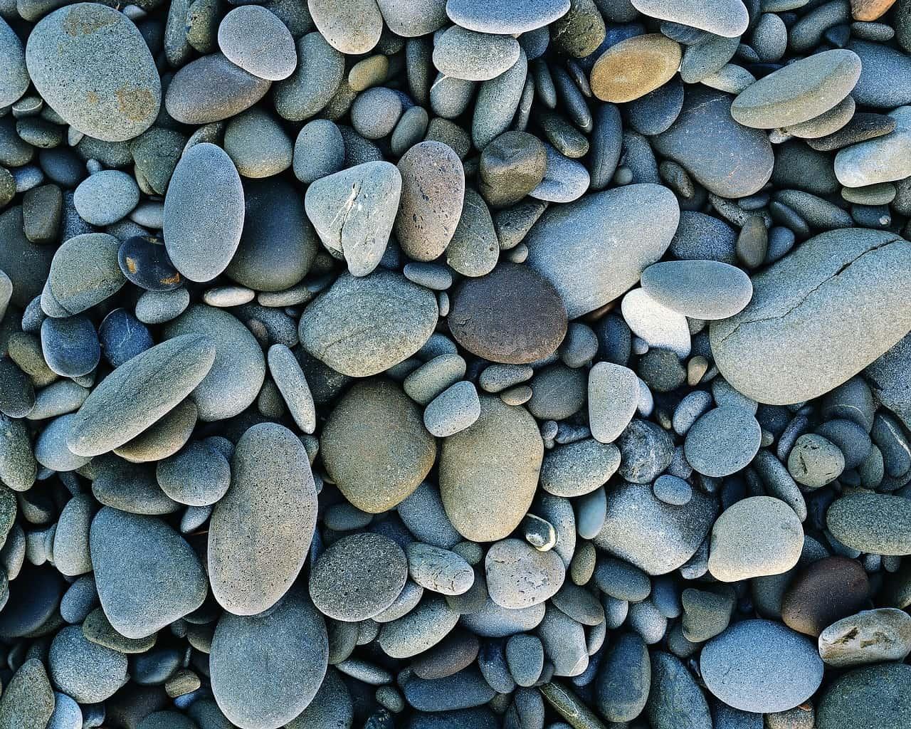 eb28519930c54357ccc74f171853378d - ▷ Playa de las Escuevas 📖
