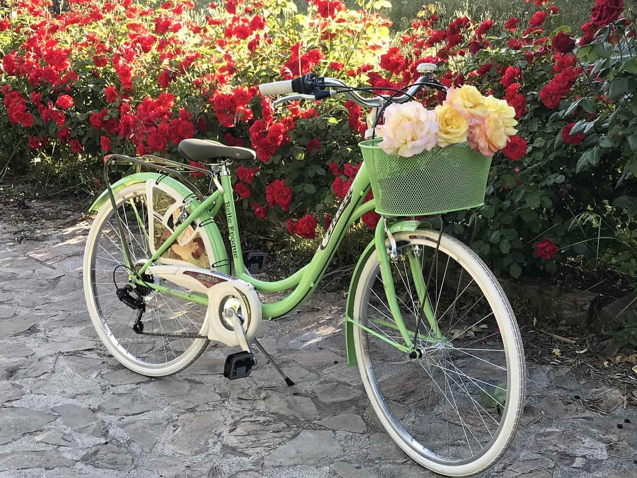 Paseo en bicicleta - ▷ Paseo en bicicleta 📖