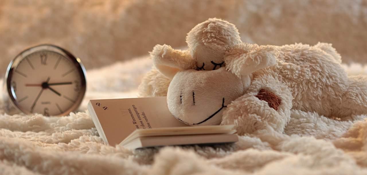 Descansar o dormir