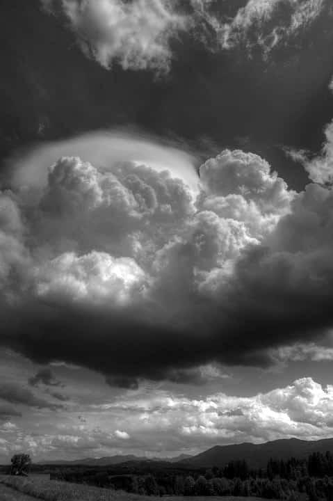 DÍA GRIS - ▷ Día gris 📖