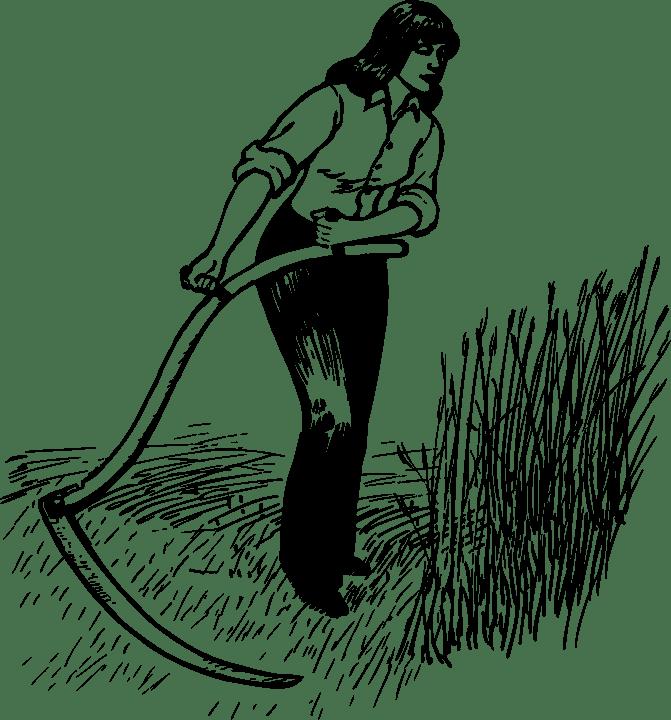 La segadora - ▷ La segadora 📖