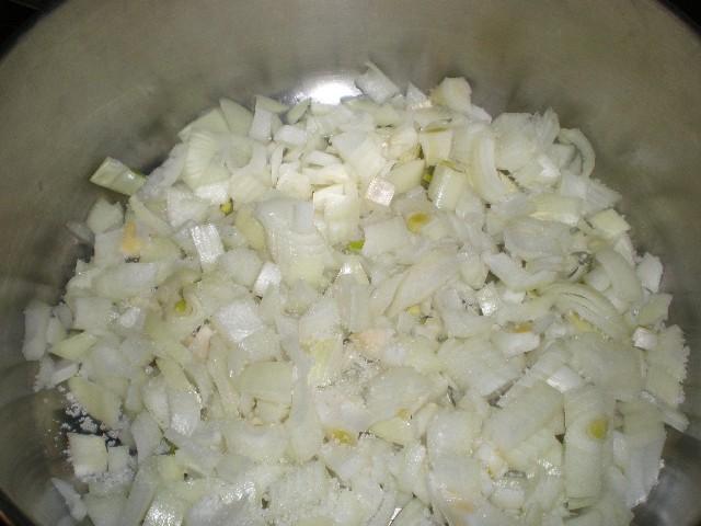 Cebolla y sal