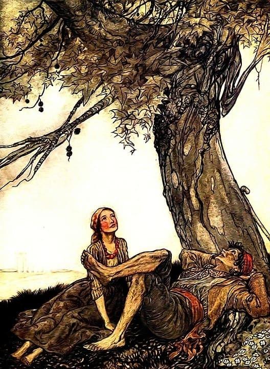 190046d78eea825976f5f5305c3cf4d2 - Mi árbol