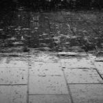 ▷ Agua y suelo 📖