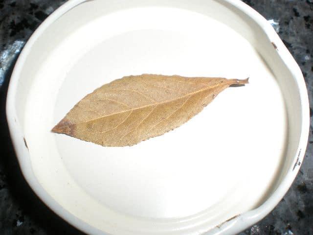Laurel - Pasta con manitas en Salsa popan
