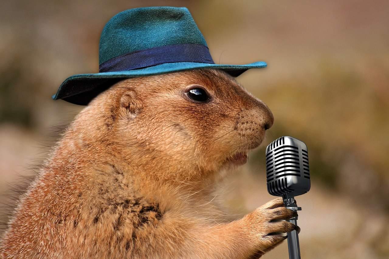 Canta - ▷ Canta 📖
